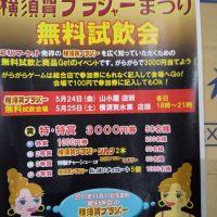 第15回 横須賀ブラジャー祭り開催 5月24日(金)~5月25日(土)